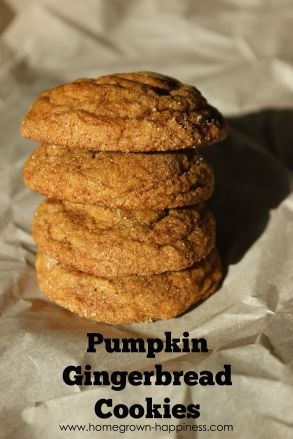 Pumpkin Gingerbread Cookies - Homegrown Happiness